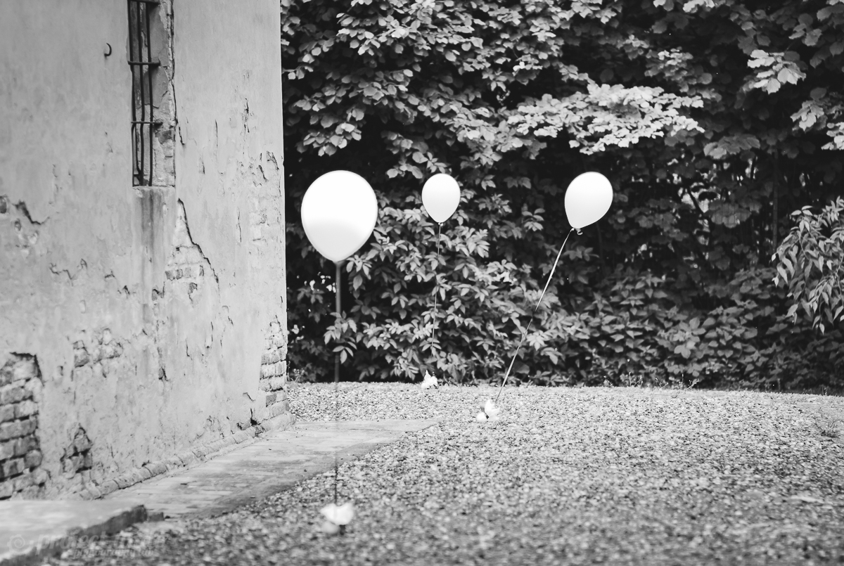 02_Matrimonio - Servizio fotografico matrimoniale - Fotografo - Parma - Fotografia